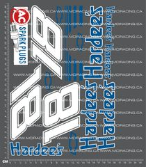 1/10TH NASCAR - DAYS OF THUNDER - HARDEES 18 DECALS