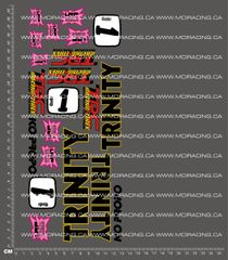 1/10TH ASSOCIATED - RC10L - DAVID SPASHETT DECALS