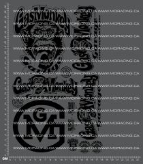 1/10TH MONSTER TRUCK - GAS MONKEY V2 DECALS