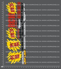 1/10TH ASSOCIATED - RC10 B3 DECALS