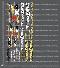 1/10TH LOSI - XX-4 WORLDS EDITION DECALS