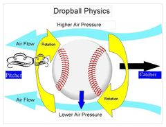 Spin Axis & Spin Rates
