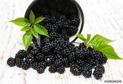 Blackberry Tea 100% Organic