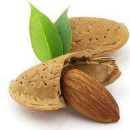 Organic Sweet Almond & Raw Honey Hand Cream 12 ounces
