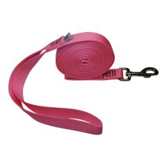 "Beast-Master 1"" Nylon Dog Leash Pink"