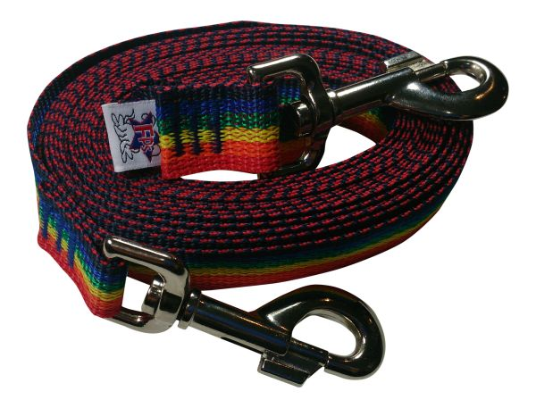 Beast-Master Polypropylene Dog Tether Rainbow Spectrum