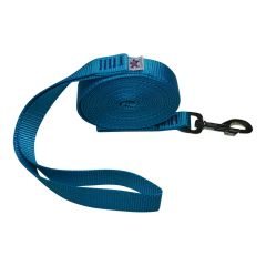 "Beast-Master 1"" Nylon Dog Leash Ice Blue"