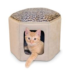 Kitty Clubhouse