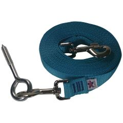 Beast-Master Nylon Dog Tether with Lag Screw-Teal