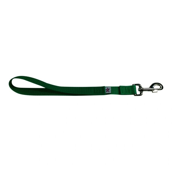 BM Nylon Dog Training Lead/Leash 12 Inch Shamrock Green