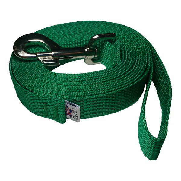 Beast-Master 1 Inch Polypropylene Dog Leash FPS-PP100 Shamrock Green