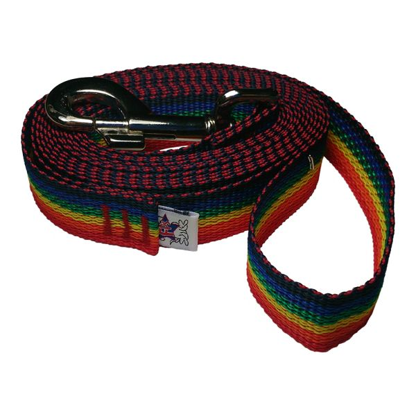 Beast-Master 1 Inch Polypropylene Dog Leash FPS-PP100 Rainbow Spectrum