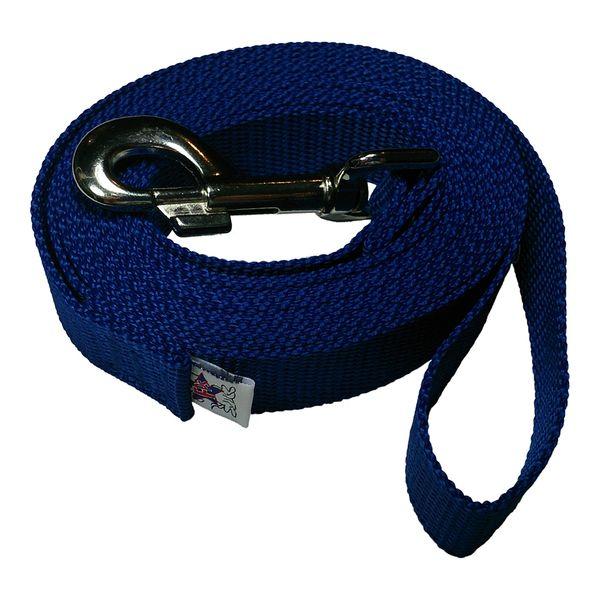 Beast-Master 1 Inch Polypropylene Dog Leash FPS-PP100 Royal Blue