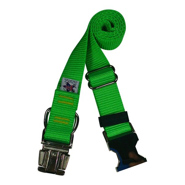 Beast-Master Nylon Dog Collar Metal Hardware-Electric' Green