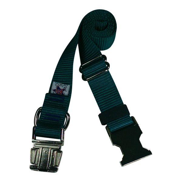 Beast-Master Nylon Dog Collar Metal Hardware-Teal