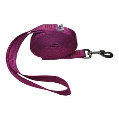 "Beast-Master 3/4"" Nylon Dog Leash Rose"