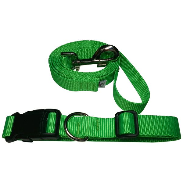 Beast-Master Neon Dog Collar and Leash Electric' Green