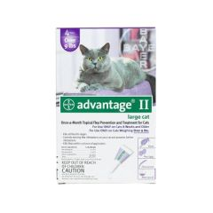 Flea Control for Cats and Kittens Over 9 lbs 4 Month Supply