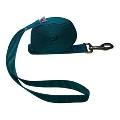 "Beast-Master 1"" Nylon Dog Leash Teal"