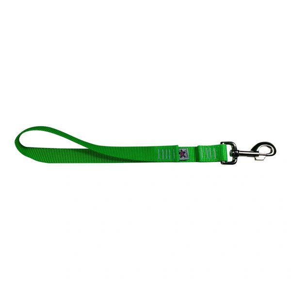 BM Nylon Dog Training Lead/Leash 12 Inch Electric' Green