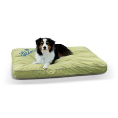 Just Relaxin' Indoor/Outdoor Pet Bed