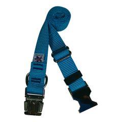Beast-Master Nylon Dog Collar Metal Hardware-Ice Blue
