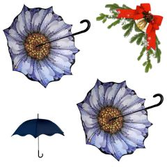 holiday deal combo - 2 daisy floral pattern umbrellas 25% off