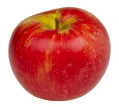 Honeycrisp Apple (4-6')