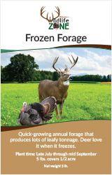 Frozen Forage