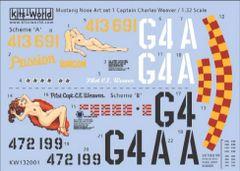 1/32 P51D Passion Wagon Scheme A/B - WBS-132001