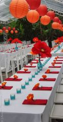 Tablecloth, Combination