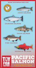 Pacific Salmon Toy Fish Set NOT AVAILABLE YET