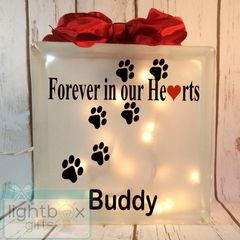 Forever in our Hearts personalized Pet Memorial etched glass LightBox