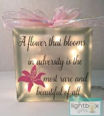 A flower that blooms in adversity is the most rare and beautiful of all LightBox