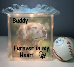 Pet loss gifts, pet Sympathy, loss of Pet, dog memorial gift, dog Loss, dog Memorial, pet loss memorial gift Furever in my heart with picture