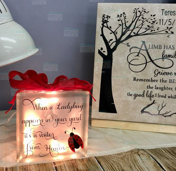 When a Ladybug appears memorial etched glass LightBox