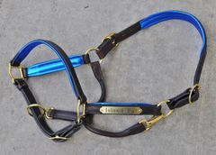 Perri's padded leather halter CUSTOM