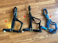 Yearling used halters