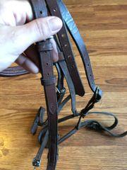 Horse schooling bridle