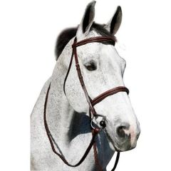 Henri de Rivel pro plain raised padded bridle with anti-press head piece and matching reins