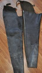 Barnstable riding Leather chaps, ladies Large