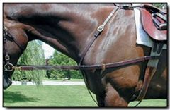 Nunn Finer leather side reins with elastic