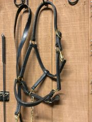 Black leather halter with shank