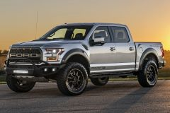 FORD RAPTOR 2011 - CURRENT