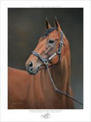 American Pharoah Officially Licensed Dual Signed Limited Edition Print - SOLD OUT