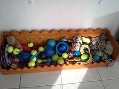 Dog toybox