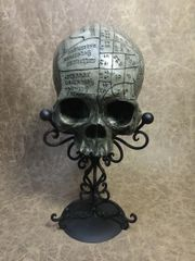 Phrenology Skull Real Human Skull Replica Carved By Zane Wylie