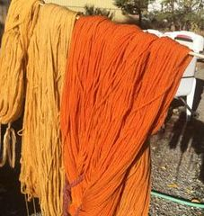 Great Basin Natural Dyes