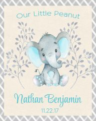 Our Little Peanut Elephant Boy Sign