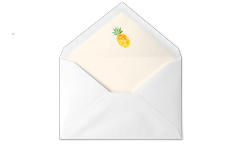 Pineapple Envelope